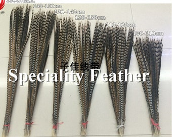 20 PCS Natural Color Lady Amherst Pheasant Tail Feather 130-140cm Chicken Feather Pheasant Feather