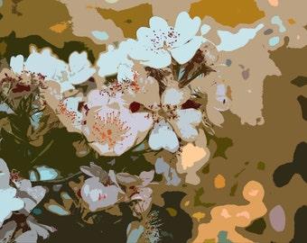 Fine Art Photography Blossom Print