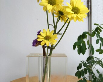 small see-thru planter