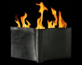 WALLET on FIRE-magic tricks and magic