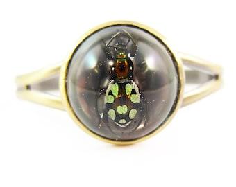 Rainbow Beetle in Eco Resin Cuff
