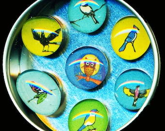 Birds Magnet Set