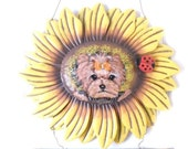 Yorkie Hand Painted Sunflower Welcome Sign by SugarspiceArt