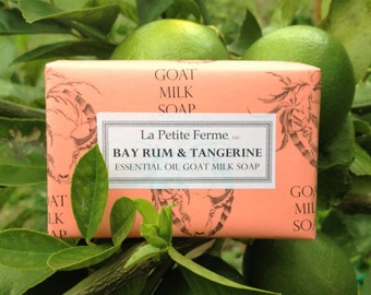 Bay Rum and Tangerine essential oil goat milk soap - one word Yum