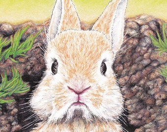 Missing You! Bunny Card from an Original Pen and Colored Pencil Drawing Orange Rabbit