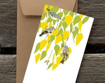 Birch and Cassin's Vireos -- 8 blank flat cards and envelopes