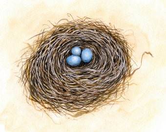 Robin Trio - Signed Print from original watercolor painting of a bird's nest
