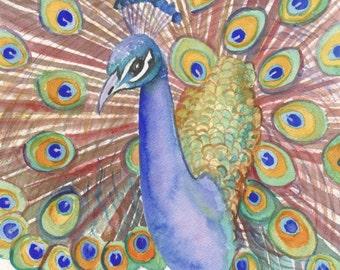peacocks, peacock art prints, 5x7 giclee prints, Kauai Hawaii, Peafowls,  Bird Art, colorful peacocks, watercolor peacocks, blue birds