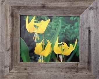 Reclaimed Wood Frame - Wide Width 3 inch Homestead Series