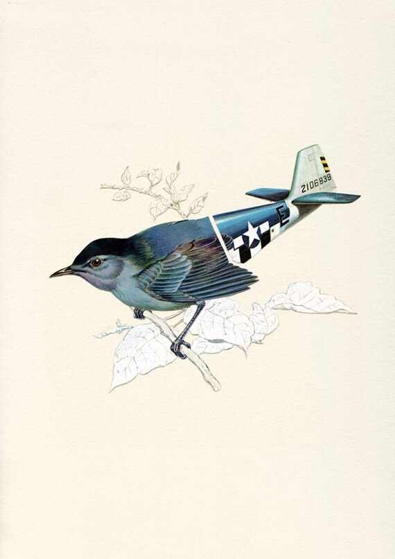 Aerofauna Blue - Print