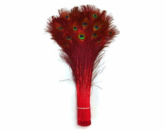 "Peacock Tails, 100 Pieces - 20-25"" RED Dyed Over Natural Peacock Tail Eye Wholesale Feathers (bulk) : 4057"