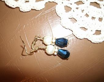Midnight Drop Earrings in Goldtone