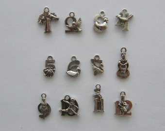 The 12 days of Christmas collection - 12 different antique silver tone charms CT110