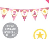 INSTANT DOWNLOAD Pink Country Western Party - DIY printable pennant banner - Includes all letters, plus ages 1-18