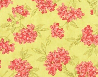 Aloha Girl by Joanna Figueroa/Fig Tree & Co for Moda - 100% Cotton BTY -  Citrus  20241-18