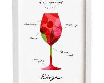 "Rioja Wine Art - Wine Anatomy print - Wine Illustration - 11""x15 - archival fine art giclée print"