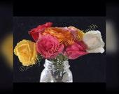 "Print Roses, Print of my Original Digital Painting ""Roses from Joe"" - roses, pink, white, yellow, mason jar,"