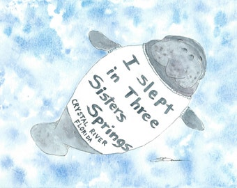 Original watercolor Crystal River sea cow Florida 9 x 12 manatee bowman I Slept In Three Sisters Springs seacow