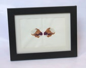 Copper Butterfly inkblot style painting