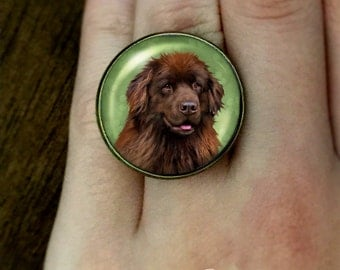 BROWN NEWFOUNDLAND DOG Jewelry Art Pet Gift Antique Bronze Brass Adjustable Cabochon Statement Ring