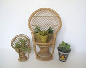 Mid century peacock chair planter/ woven chair/ boho plant display