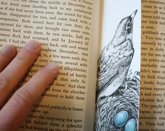 Robin Nest Bookmark - Original Ink Illustration
