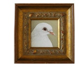 White dove painting - framed art original - dove of peace - peace dove canvas painting - wedding dove - wedding gift for the bride and groom