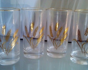 Golden Wheat Glasses/Tumblers by Homer Laughlin, Vintage Glassware, Set of Four Glasses, Gold Rim, Wheat Design, Kitschy Kitchen Glasses
