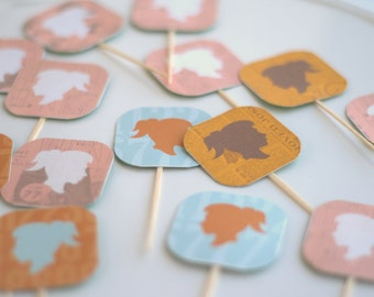 Boy and or Girl picks for muffins and cupcakes