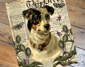 Sir Walter - Vintage Style Personalized Terrier Dog Antique Ephemera Print from Curious London