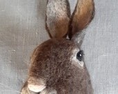 ON SALE super cute brown rabbit mount by feltfactory/fauxfauna
