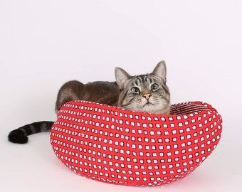 Cat Canoe in Red and White Geometric Squares