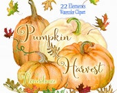 Pumpkin watercolor clipart, Halloween, Autumn, Painted Leaves, digital, hand painted clipart, fall clipart, instant download, Thanksgiving