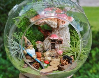 """Forest Gnome Terrarium Kit ~ Mushroom House ~ 2 Air plants ~ 2 Gnome choices ~ Wood Stepping Stones, Moss, Pinecones ~ 7"""" Glass Globe ~ Gift"""