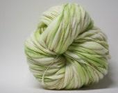 Merino Thick and Thin Wool Handspun Yarn Slub  tts(tm) Hand dyed Half-Pounder LRH1503b