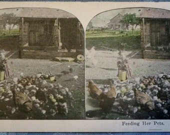 Feeding her Pets Stereograph Card for Stereoscope Antique Photo