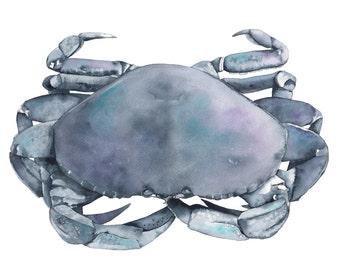 Indigo Crab watercolour painting- PRINT - A3 size largest print - C1016 - Coastal decor - beach house decor - nautical wall art
