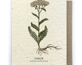 Yarrow Card - Plantable Seed Paper - Blank Inside