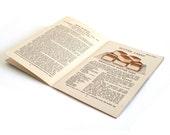 "Cake Baking Cookbook ""Igleheart's Cake Secrets"" Swans Down Flour 1920s Antique Recipe Booklet"