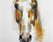 Horse look, Animal, Contemporary Original Fine Art, Pastels Drawing of a Horse Head