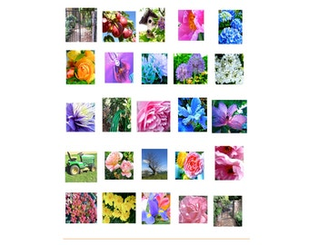 INSTANT DOWNLOAD Garden Coloring Book thumbnail sized color reference photos  flowers garden garden tools, multi-color, nature photography