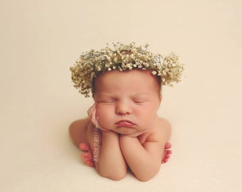 Natural Dried Baby Breath Crown, New Born Photography prop