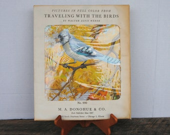 Vintage Traveling with The Birds Pictures in Full Color by Walter Alois Weber 12 Prints