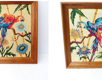 Vtg 50s tropical parrots / framed Paint by Number PBN picture painting / set of two / tropical wall art / mid century decor / bird painting