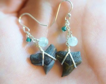 Large Tiger Shark Tooth Earrings - Aquamarine and Sterling Silver