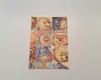 Passport Cover Winnie the Pooh (#315)