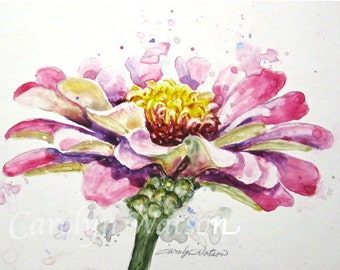 Original Watercolor Pink Zinnia 5x7 Flower painting