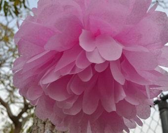 18 in. tissue paper flower/pom pom raspberry