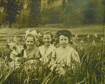Antique Snapshot - Silver Gelatin Photo - Young Girls in Field Of Flowers