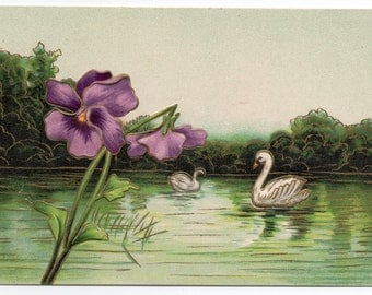 Antique Bird Postcard Swans On Water With Flowers Victorian Floral Deltiology Paper Ephemera